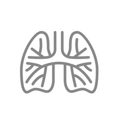 lungs with pulmonary vessels line icon pulmonary vector image