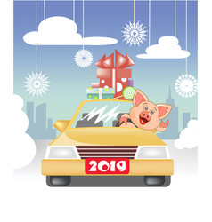 piglet eating on the car vector image