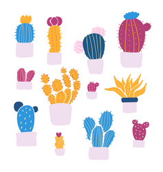 set of colorful succulents and cacti plants vector image