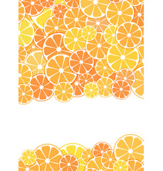 template design cover sliced halves citrus vector image