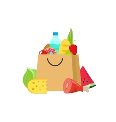 Grocery bag isolated on white vector image