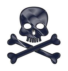 Drawing skull bones danger poison laboratory vector