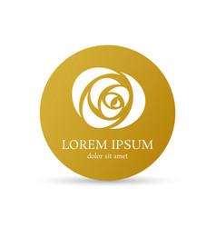 golden rose curve logo design template vector image