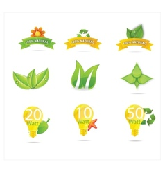 green eco leafs vector image