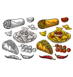 mexican traditional food set burrito tacos chili vector image