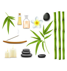 Spa and massage salon relax treatments vector
