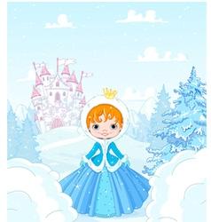 Winter Princess vector image