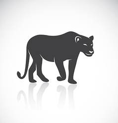 image of an female lion vector image