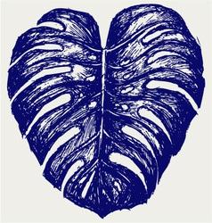 Big leaf of Monstera plant vector image vector image