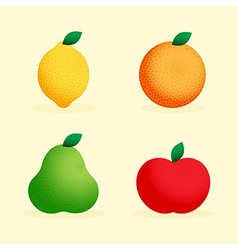 with fruits vector image vector image