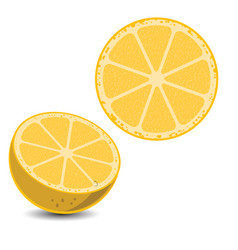 lemon3 vector image
