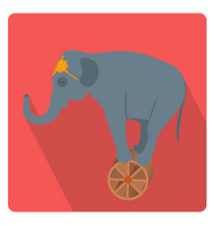 circus elephant on the wheel icon flat style with vector image vector image