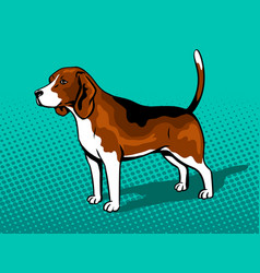 dog beagle pop art style vector image vector image