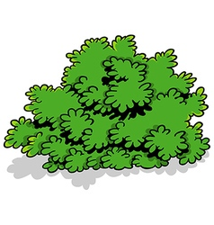Green cartoon shrub vector