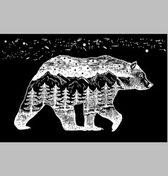 A bear and nature inside night landscape the vector