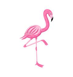 cartoon flamingo standing on one leg position vector image