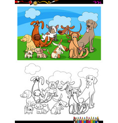 Funny dogs characters group coloring book vector