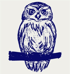 Great Owl vector image