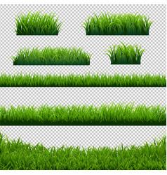 green grass borders big set transparent background vector image