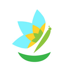 Isolated butterfly icon vector