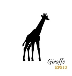 Silhouette of a giraffe vector image
