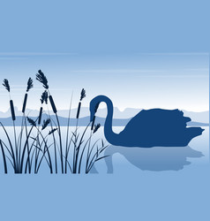 Silhouette of swan and grass scenery vector