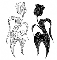 Silhouette two tulips vector
