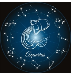 Zodiac sign aquarius vector image