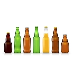 Different shapes and sizes of beer bottles vector image vector image