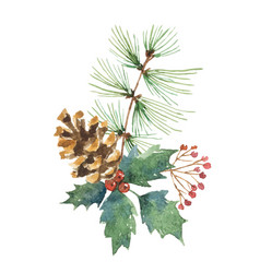 watercolor christmas bouquet with pine cone vector image vector image