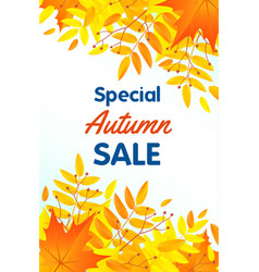 autumn special sale concept background flat style vector image