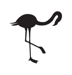 black outline or silhouette tropical flamingo flat vector image