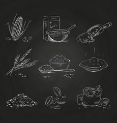Doodle cereals groats and porridge muesli and vector
