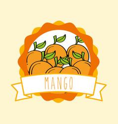 fresh mango natural fruit organic emblem design vector image