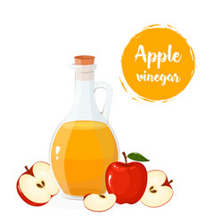 glass bottle apple cider vinegar vector image