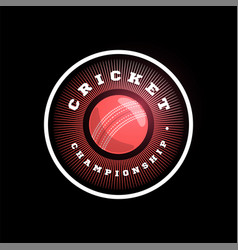 modern professional typography cricket sport vector image
