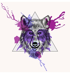 Walf face in triangle frame with watercolor ink vector