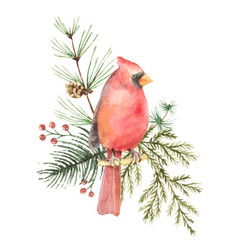Watercolor christmas bouquet with bird vector