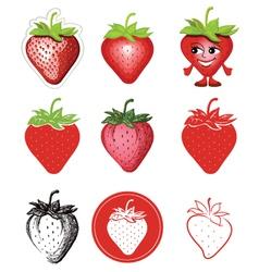 icon of strawberries vector image