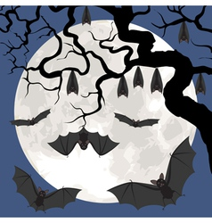 bats on tree vector image
