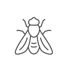 bee line outline icon and insect concept vector image