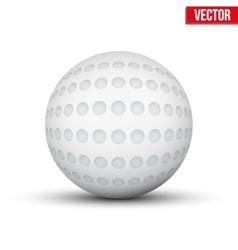 Classic Hockey Field Ball vector image