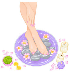 foot bath vector image