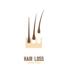 Hair loss icon vector