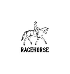 race horse hand drawn vector image