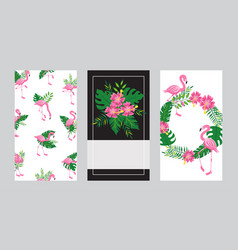 set cards templates with flamingo and tropical vector image