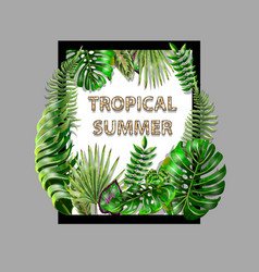 tropical design for banner or print for t-shirt vector image
