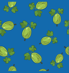 Seamless pattern gooseberry on blue background vector
