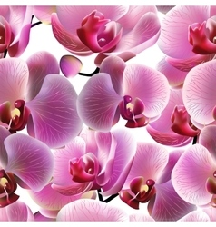 Orchid seamless pattern EPS10 vector image