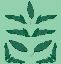 Sheets of wood for paperwork badges of leaves vector